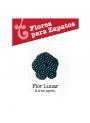 Flor Lunar para Zapatos de Flamenco