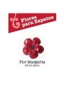 Flor Margarita para Zapatos Flamencos