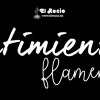 Frases Flamencas